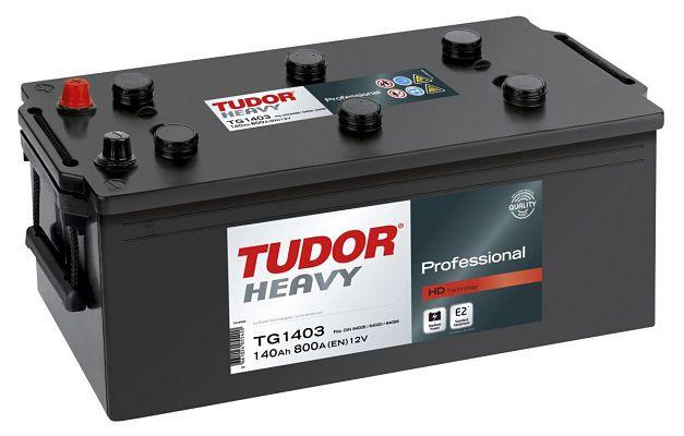 Tudor heavy professional